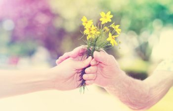 36453165 - elderly and young woman holding yellow flowers outside
