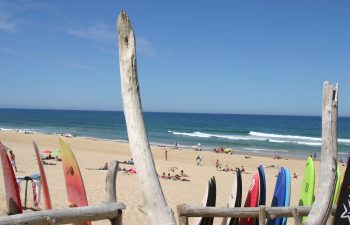Strand surfschool Seignosse